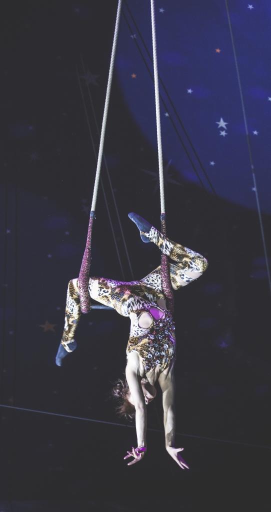 pic of Paulos Circus by Paul Foster of Tempo Media for Exploring Exeter