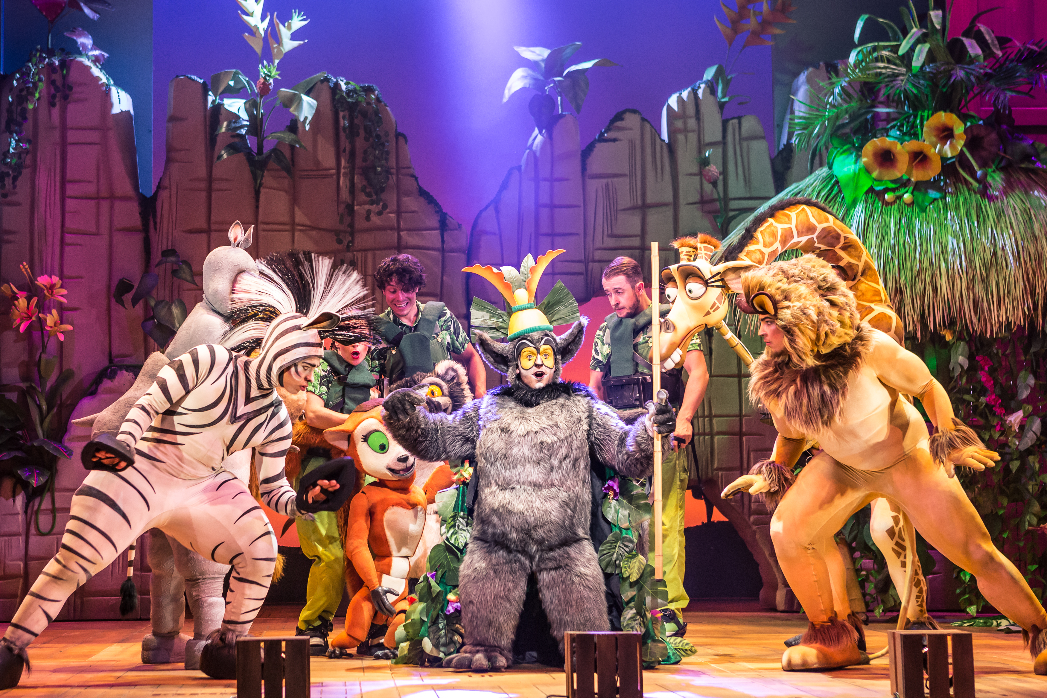 Theatre: Whatever you do, don't miss out on Madagascar - the musical at Exeter Northcott. Exploring Exeter